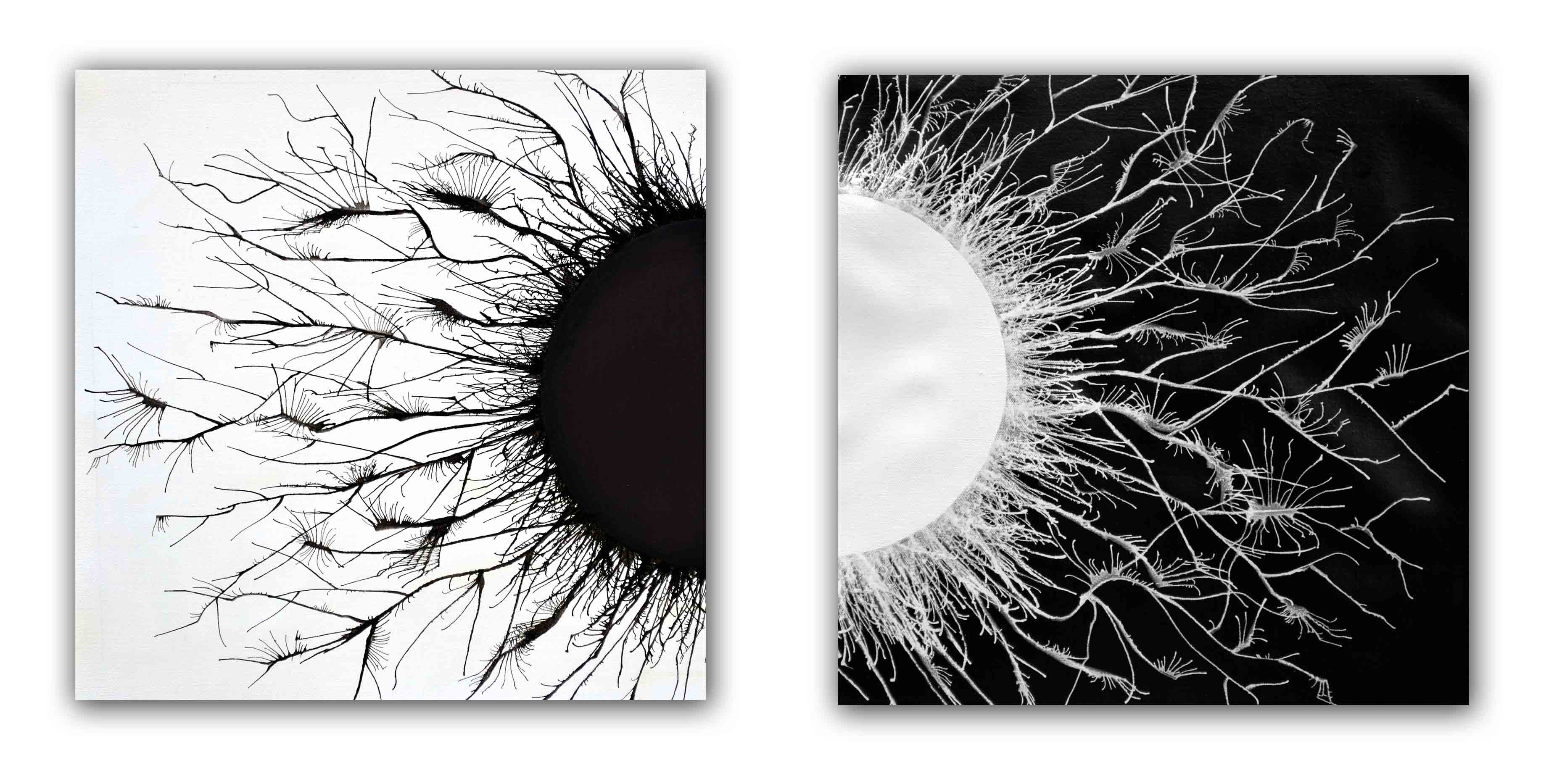 Opposites Acrylic Diptych Painting Contemporary Art